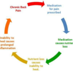 Perscription Cycle