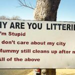why-India-is-not-clean-littering