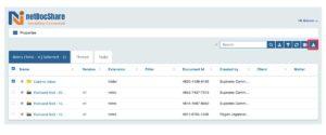netdocshare-screenshot-01