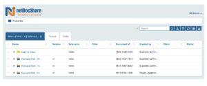 netdocshare-screenshot-02