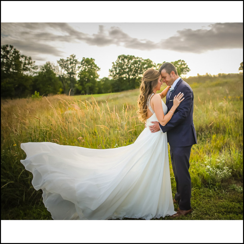 Link to Greater St Louis area Wedding Photographers gallery: Linnsie and Brian