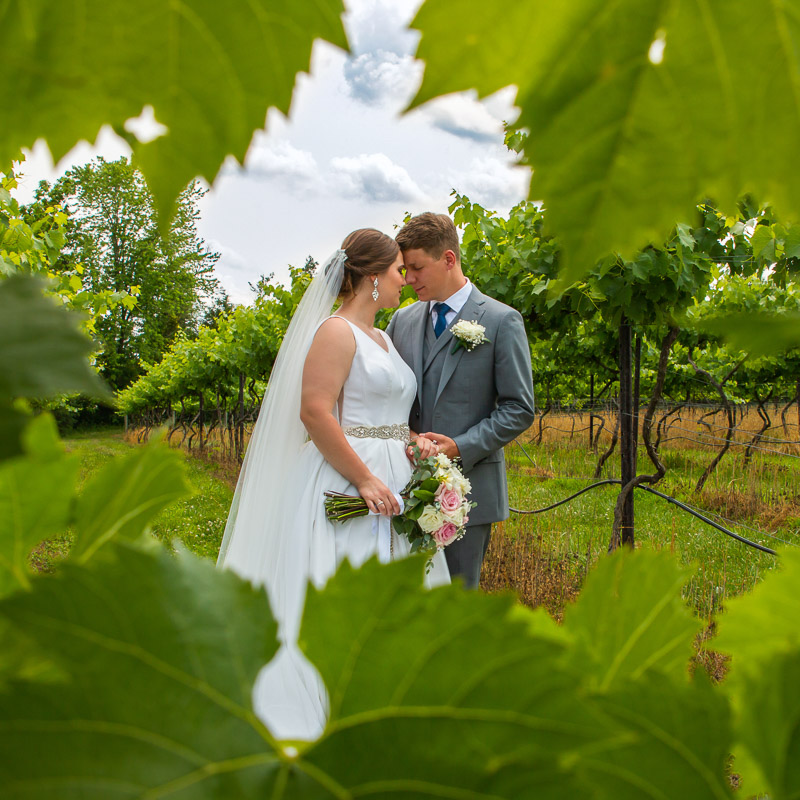 Link to Greater St Louis area Wedding Photographers gallery: Kristen and Thorsten