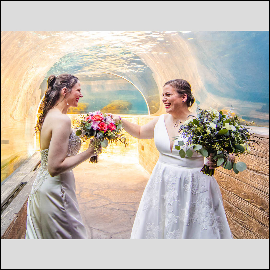 Link to wedding photography gallery of Annie and Julianne