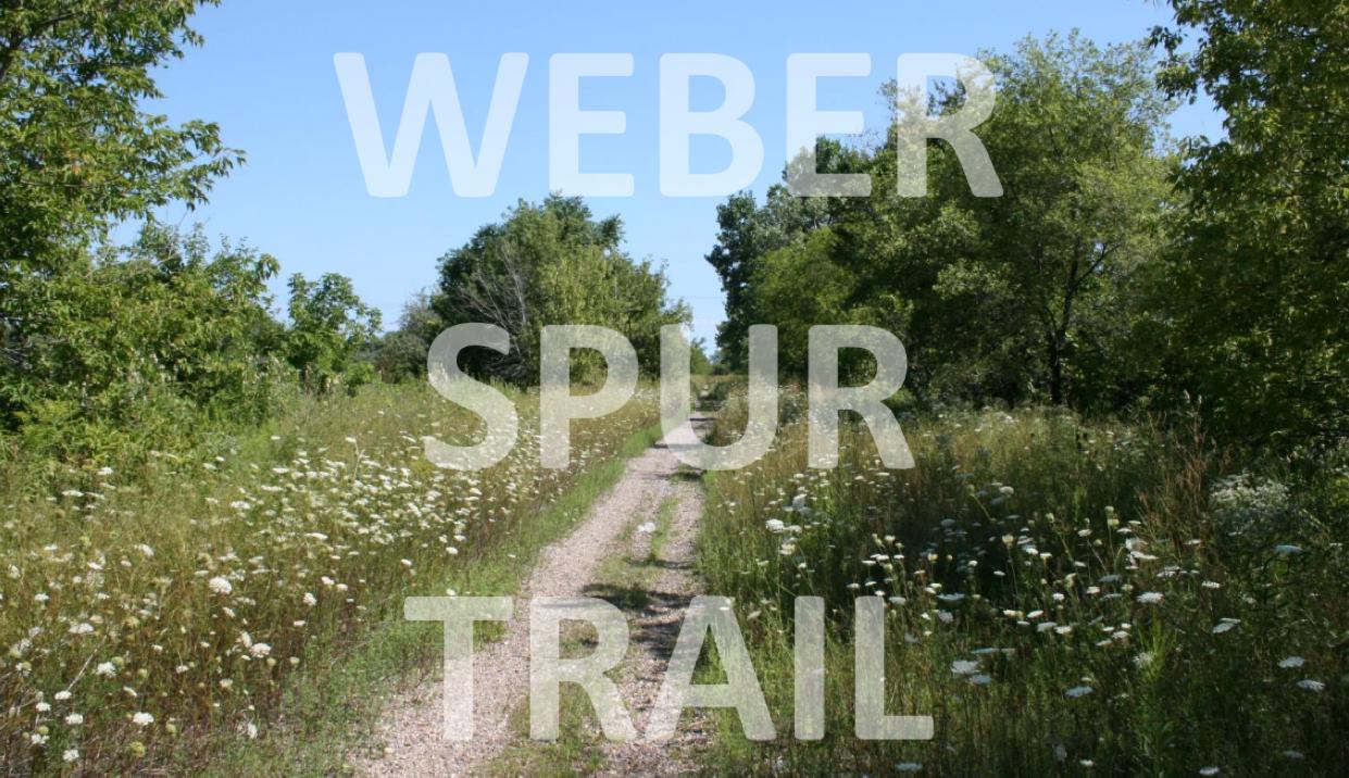 Weber Spur Cover