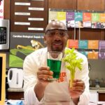 Teacher Turns Kitchen into Chemistry Lab to Teach Students Across the Nation