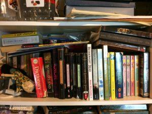 Basement Bookshelves (top shelf)