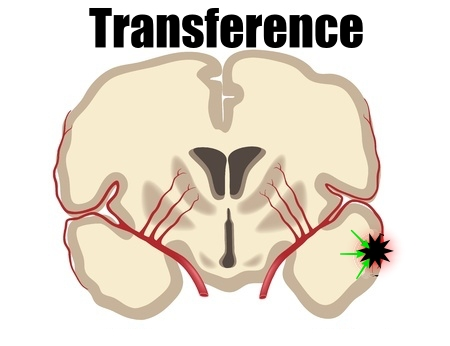 vector image of transference