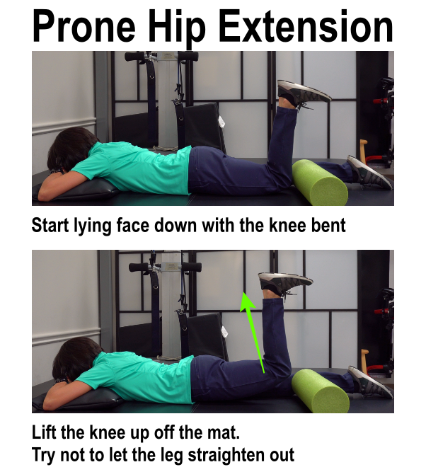 image of hamstring curl exercise