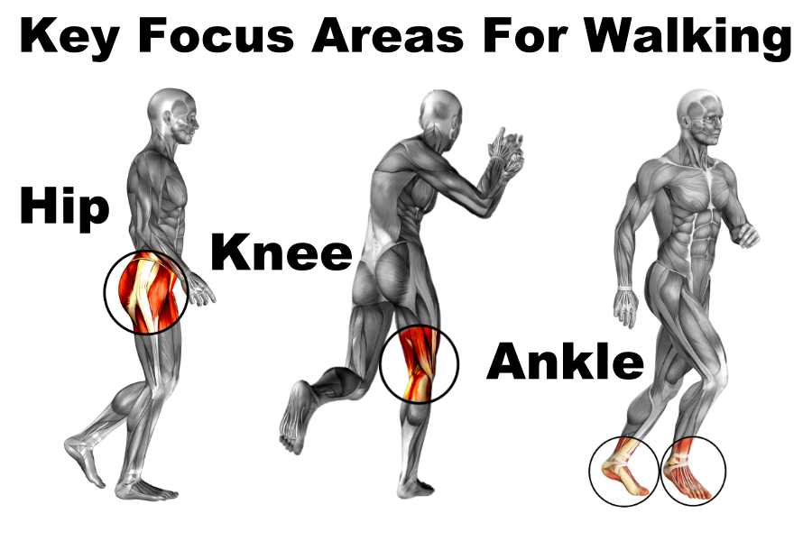 key focus areas for walking