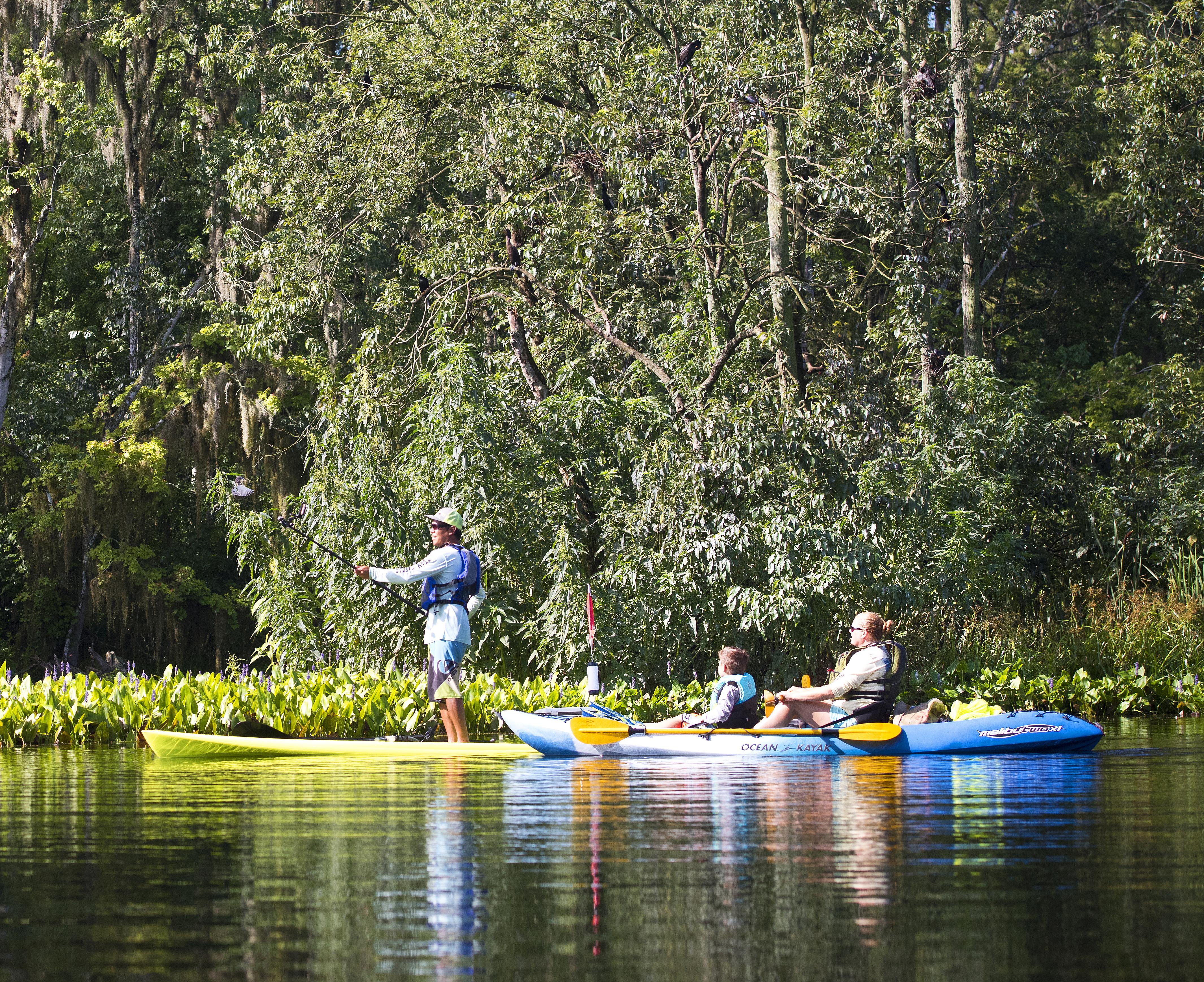 Canoe Rental Silver Springs