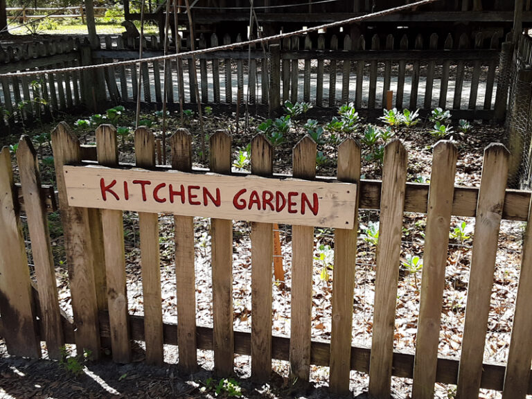Garden at Cracker Village Silver Springs State Park