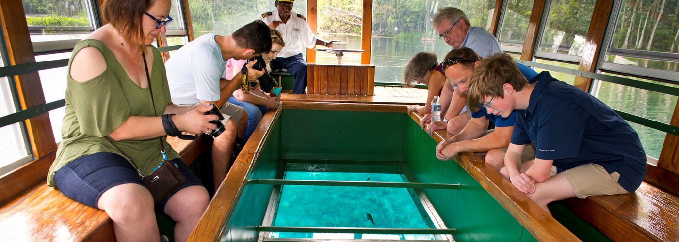Glass Bottom Boat at Silver Springs 4