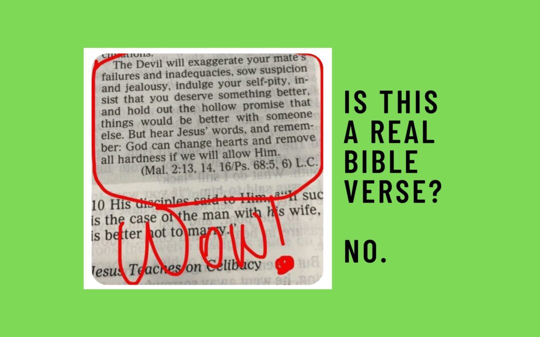 """Is """"The Devil will exaggerate your mate's failures"""" a Real Bible Verse?"""