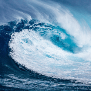 Waves of Disruption