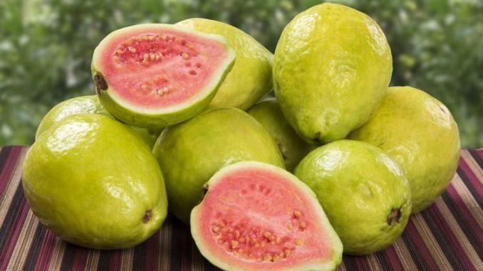 20 Razones Poderosas por la Cual la Guayaba Realmente es una Super Fruta
