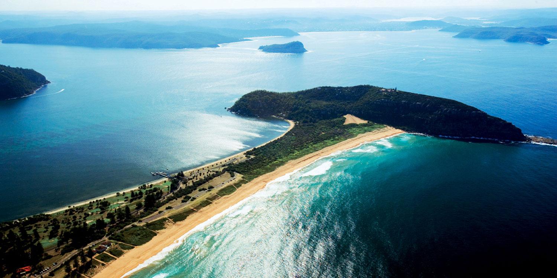 sydney sea planes whale watching palm beach