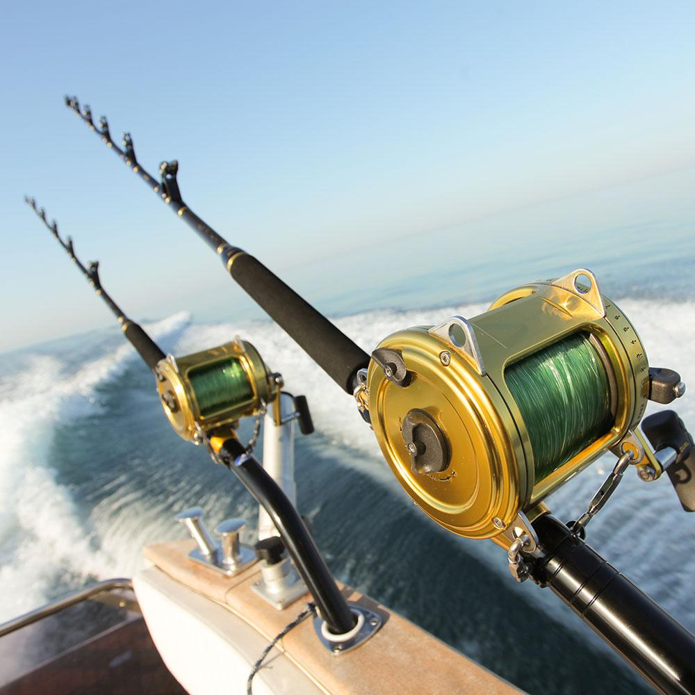 Deep Sea Fishing Off The Coast Of Sydney