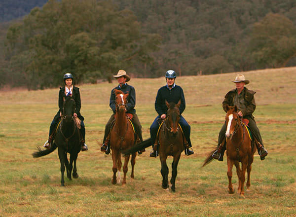 Horseriding in the Blue Mountains on a private tour