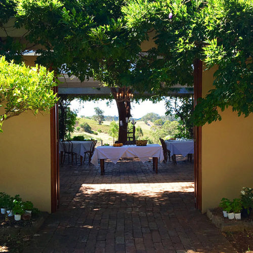 An image of Bistro Molines having lunch in the Hunter Valley