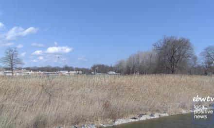 Future Bridge Over Black River Canal