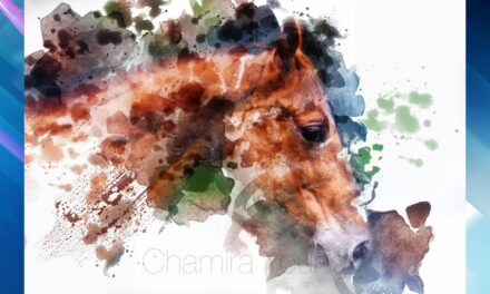 Chamira Young – Fine Artist and Photographer