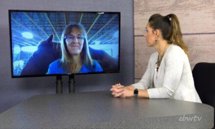 Lisa Marriott – Day Dreams Farm Equine Rescue and Rehabilitation