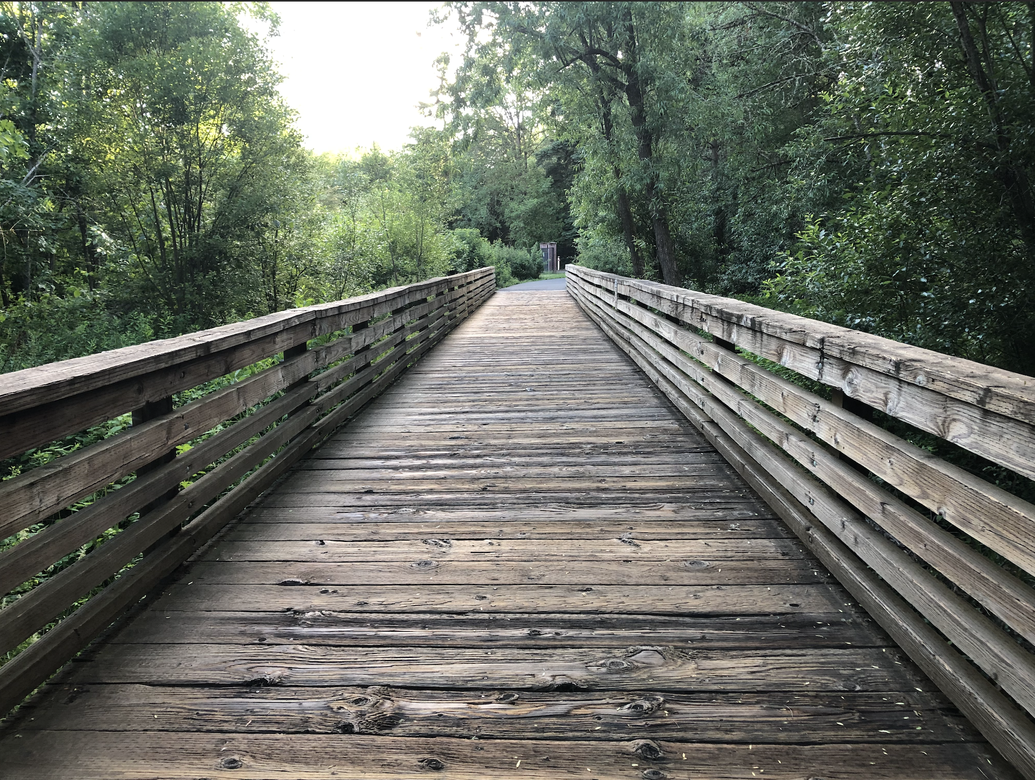 Greenery and bridges; tACTful transitions from the ACT on 2021 series from Linda Cohen Consulting