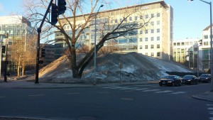 Sunrise over Mt Kendall, photographed 3/18/15.