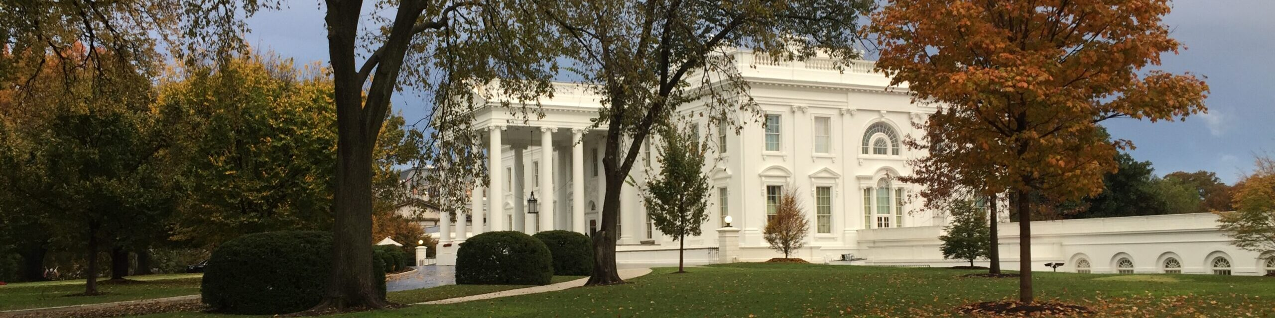 The White House Blogger