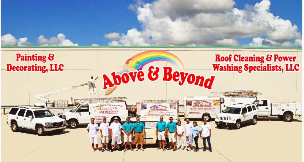 Above and Beyond Painting