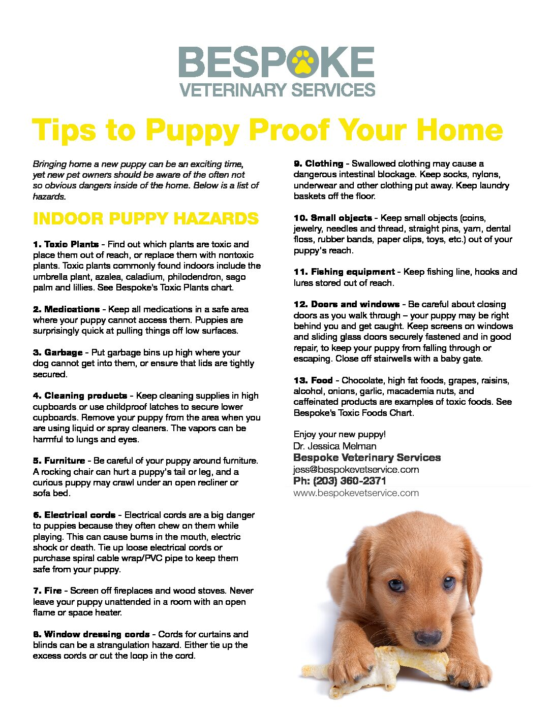 Tips to Puppy Proof Your Home