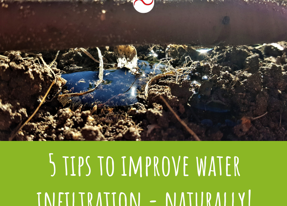 Five tips for improving water infiltration