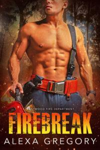 Book Cover: Firebreak