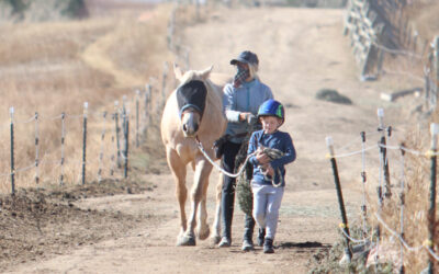 Child Beginner Horsemanship Classes