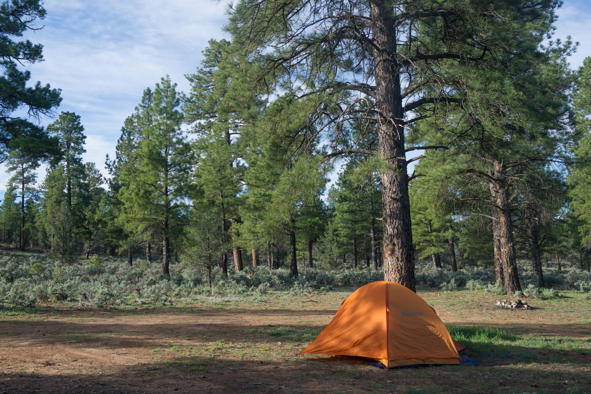 Grand Canyon Free Dispersed Tent Camping