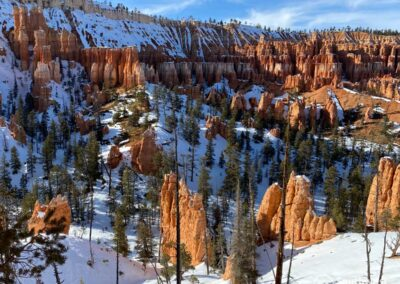 View of the Bryce Amphitheater from the trail.