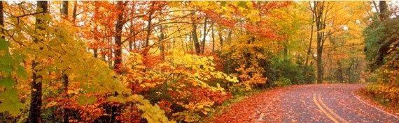 6 Tips for Fall Running