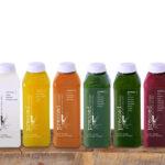 Meyve ve Sebze Suyu Orucu (Juice Fasting) - mutlumikrop.com