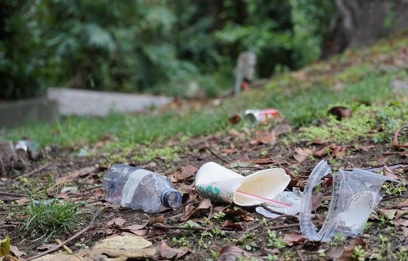 The Real Problem with Metros Parks and Nature Spending cm