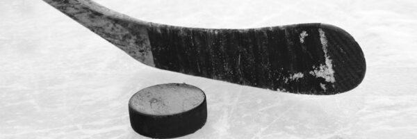 David Grupa Sports - Hockey