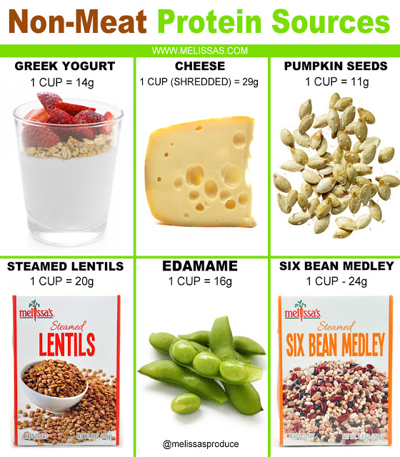 Non Meat Protein Sources