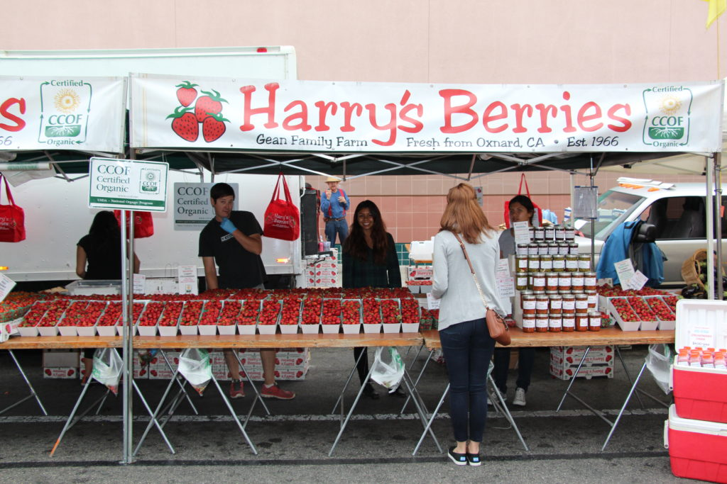 santa monicas farmers market - harry's berries