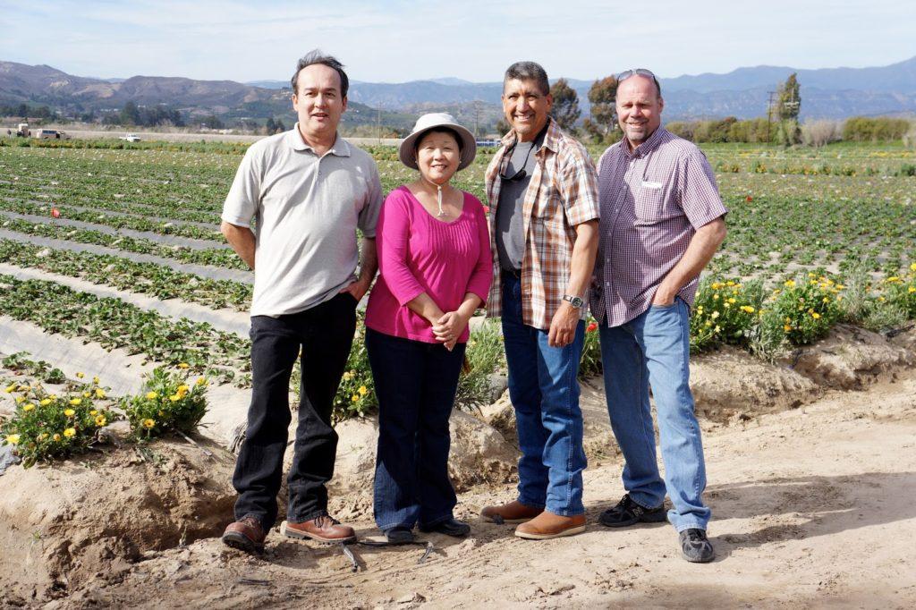 harry's berries family