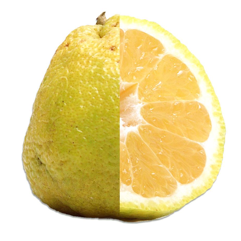 Ugli Fruit Inside