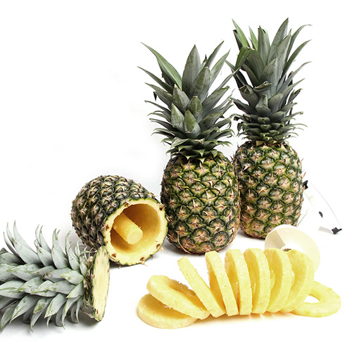 2018 Gift Guide for Food Lovers l Gold Pineapples with Corer