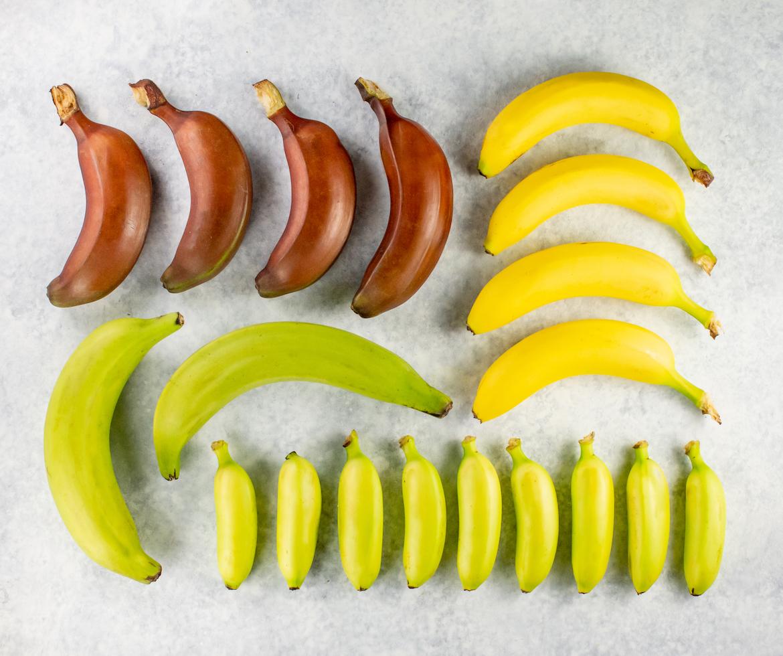 variety bananas, specialty bananas, banana guide, bananas