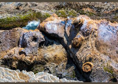 Montana de Oro stone art-1