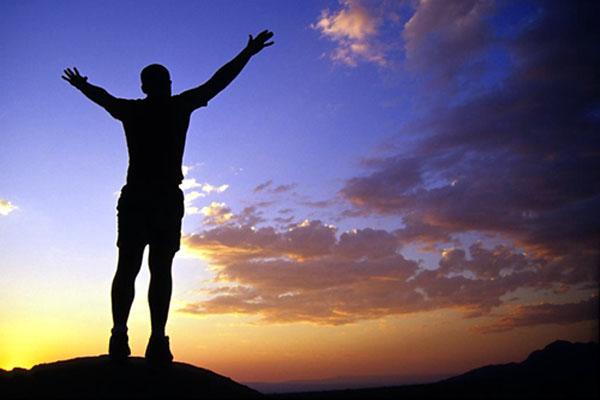 Living Wellness in 5 Steps