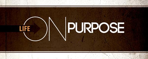 A Happy 2015 on Purpose
