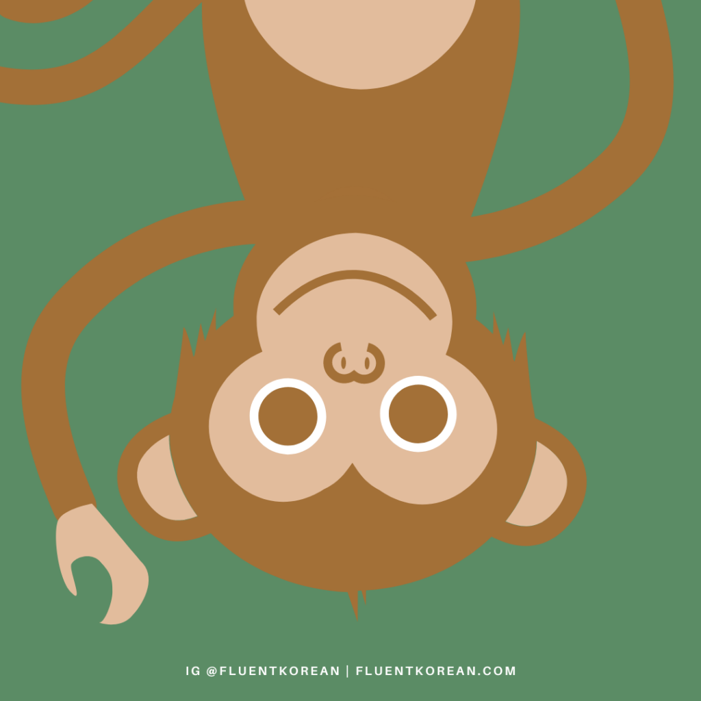 [Proverb] 원숭이도 나무에서 떨어진다 – Even Monkeys Fall off Trees 🐵